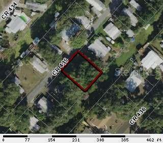 TBD CR 435 Property Photo - LAKE PANASOFFKEE, FL real estate listing
