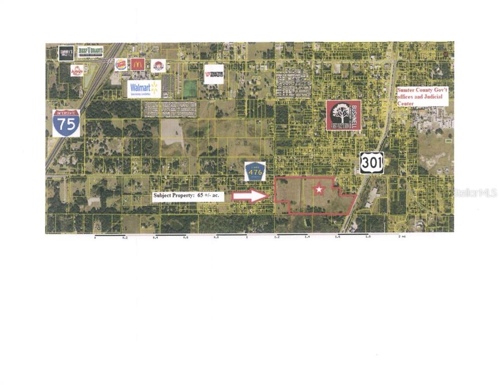 W. C-476 & US 301 Property Photo - BUSHNELL, FL real estate listing