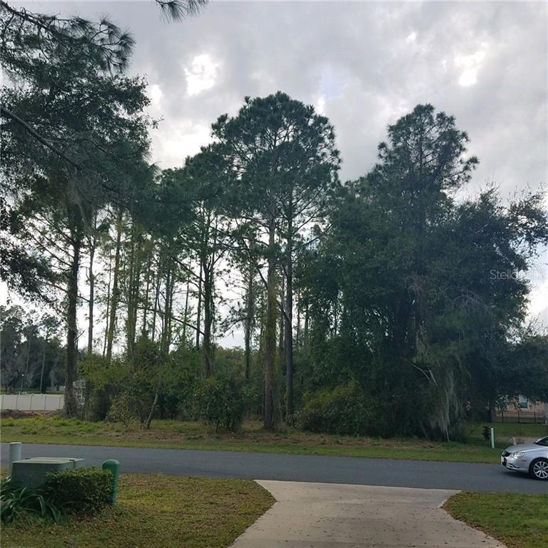 752 Oaks Shores Road Property Photo