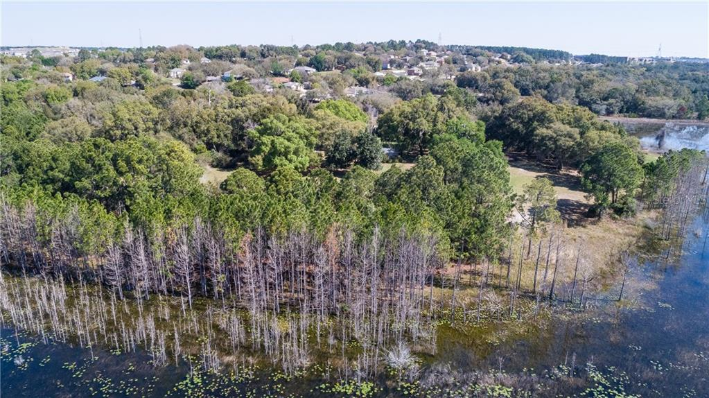 999 E PLUM LAKE LANE Property Photo - MINNEOLA, FL real estate listing