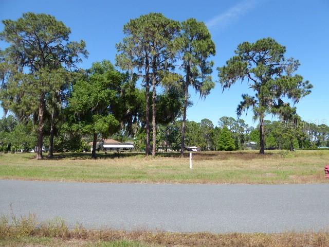 34966 Golden Tree Drive Property Photo