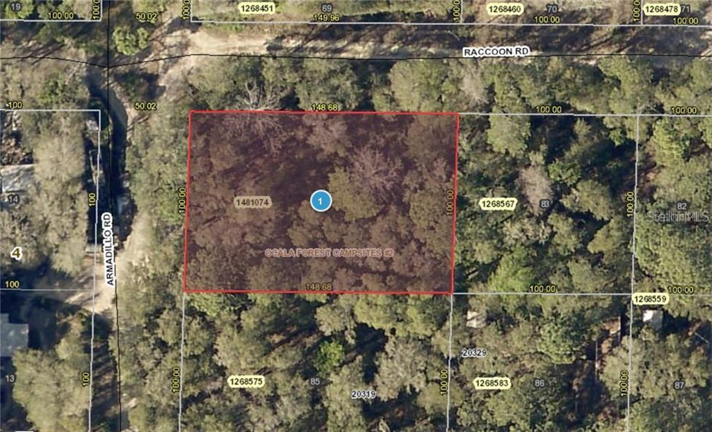 RACCOON RD Property Photo - ALTOONA, FL real estate listing