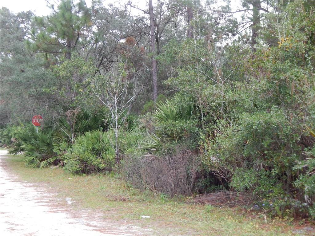 MARYLAND ST Property Photo - PAISLEY, FL real estate listing