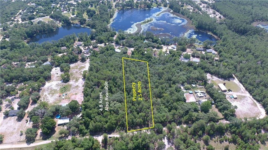 PINE VALLEY DR Property Photo - PAISLEY, FL real estate listing