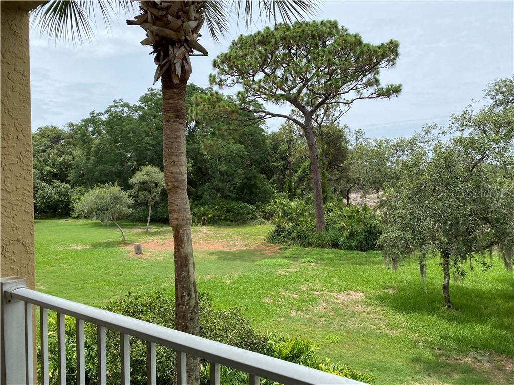 6337 PARC CORNICHE DR #2204 Property Photo - ORLANDO, FL real estate listing