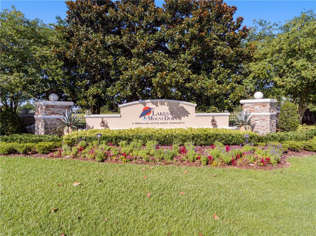 8576 Lakes Of Mount Dora Boulevard Property Photo 1