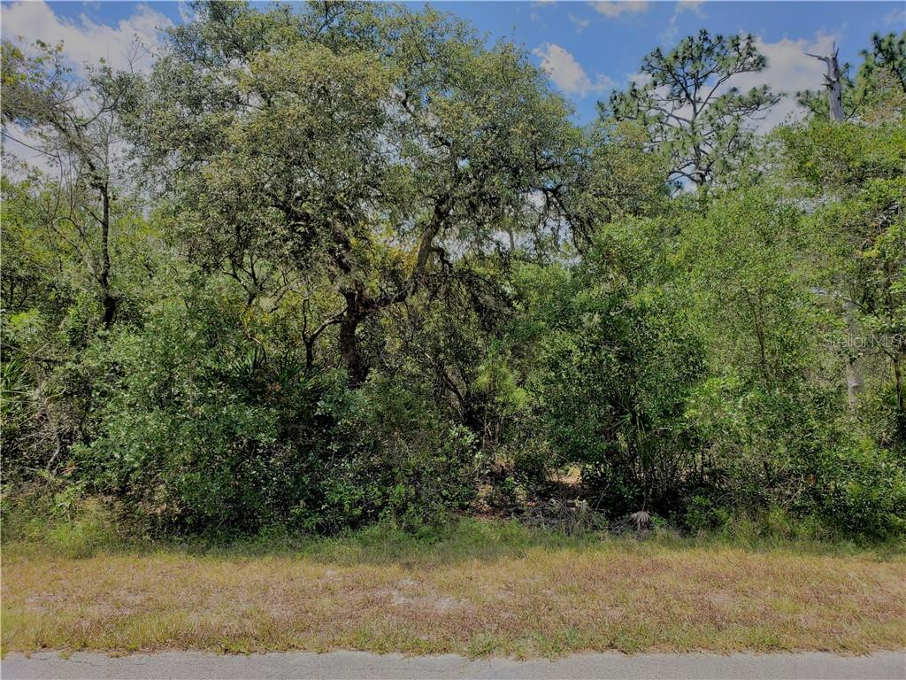 Kumquat Avenue Property Photo