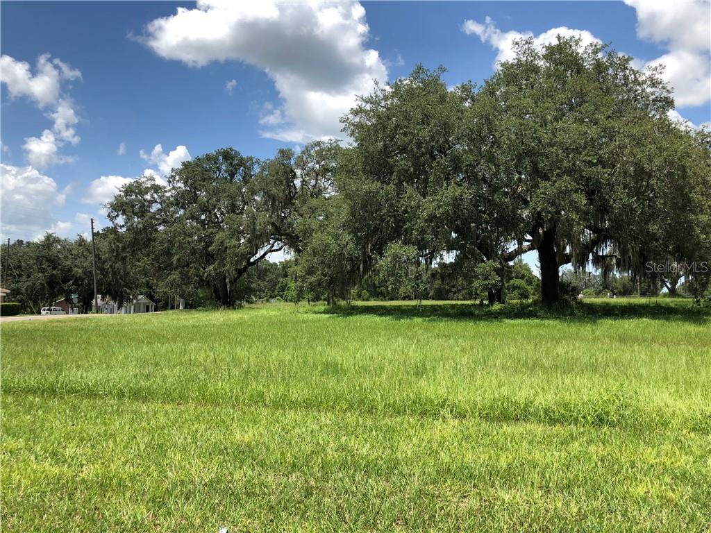 E MYERS BOULEVARD Property Photo - MASCOTTE, FL real estate listing