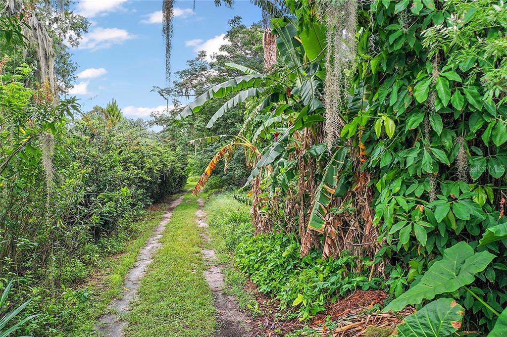 VIRGINIA AVENUE Property Photo - TAVARES, FL real estate listing