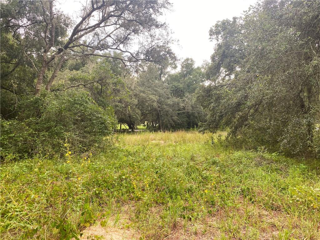 34024 CONGRESSIONAL AVENUE Property Photo