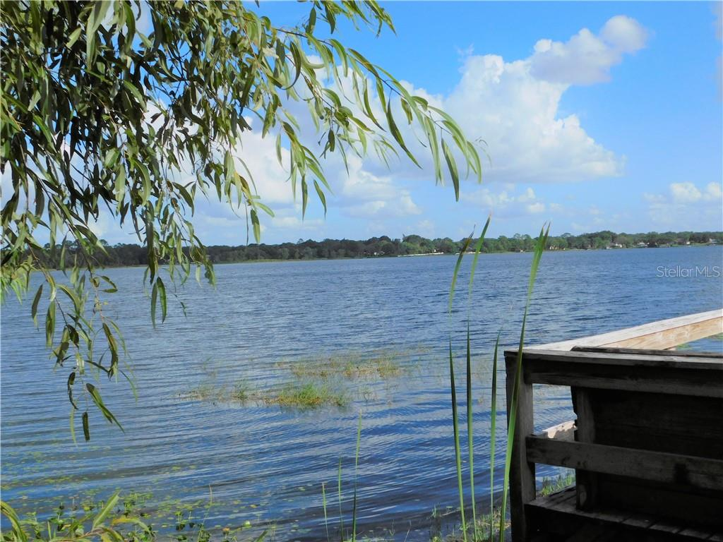 7360 LAKE OLA CIRCLE Property Photo - MOUNT DORA, FL real estate listing