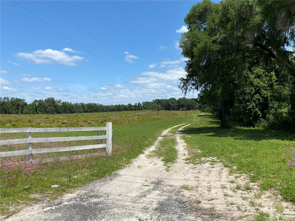 16150 SE 58TH AVENUE Property Photo - SUMMERFIELD, FL real estate listing
