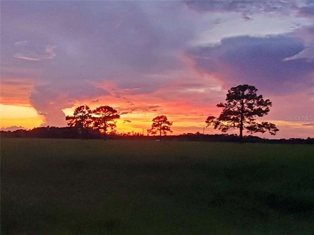 WIYGUL ROAD Property Photo - UMATILLA, FL real estate listing