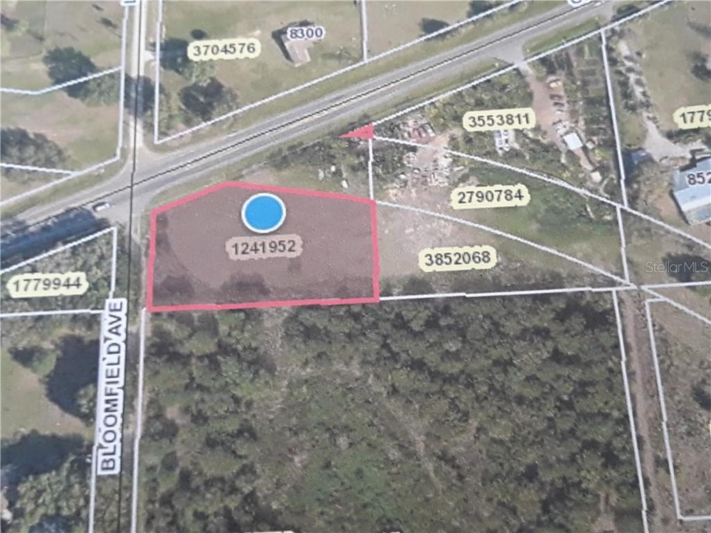 COUNTY ROAD 48 Property Photo - YALAHA, FL real estate listing
