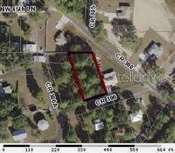 TBD CR 306 Property Photo - LAKE PANASOFFKEE, FL real estate listing