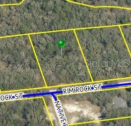 34441 RIM ROCK STREET Property Photo