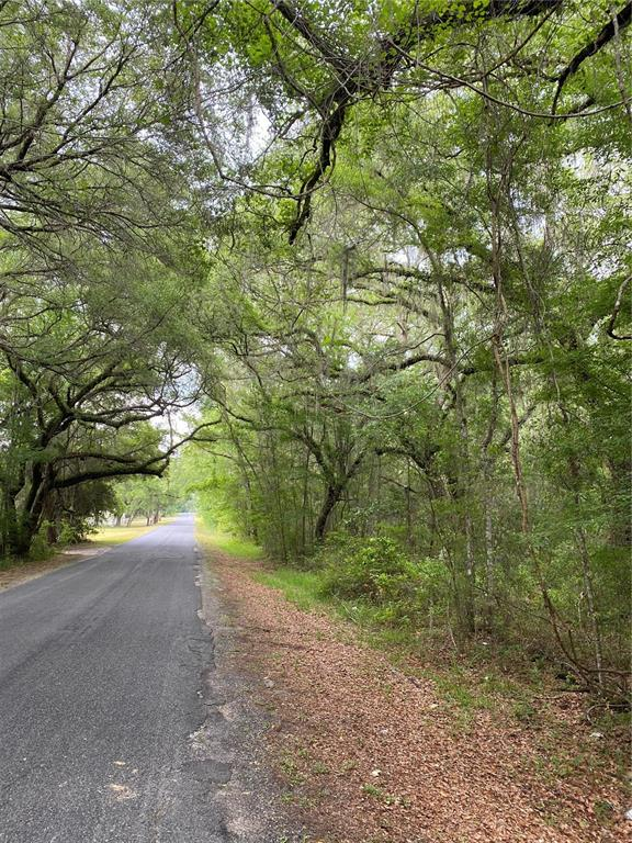 NW 140TH AVENUE Property Photo - OXFORD, FL real estate listing
