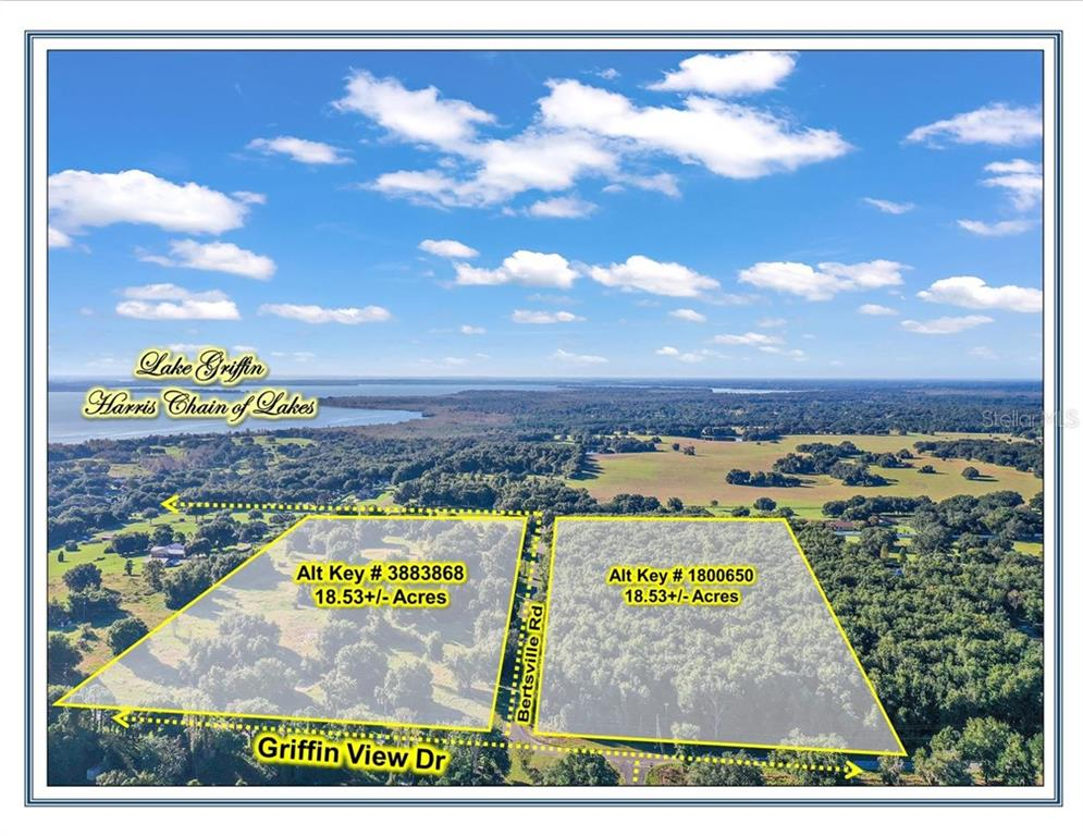 GRIFFIN VIEW DR & BERTSVILLE ROAD Property Photo - LADY LAKE, FL real estate listing