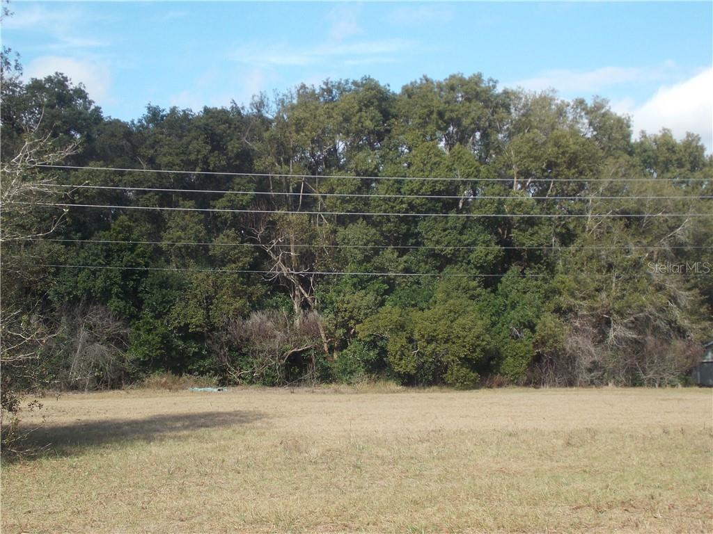 TURNBERRY AVENUE Property Photo - MOUNT PLYMOUTH, FL real estate listing