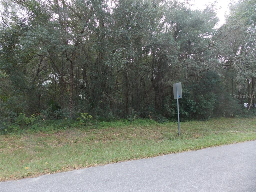 LIDO AVENUE Property Photo - MOUNT PLYMOUTH, FL real estate listing