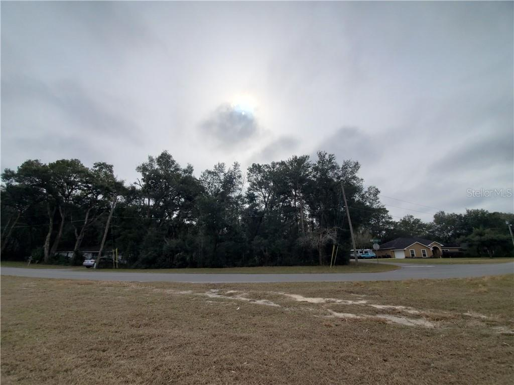PRESTWICK AVENUE Property Photo - MOUNT PLYMOUTH, FL real estate listing