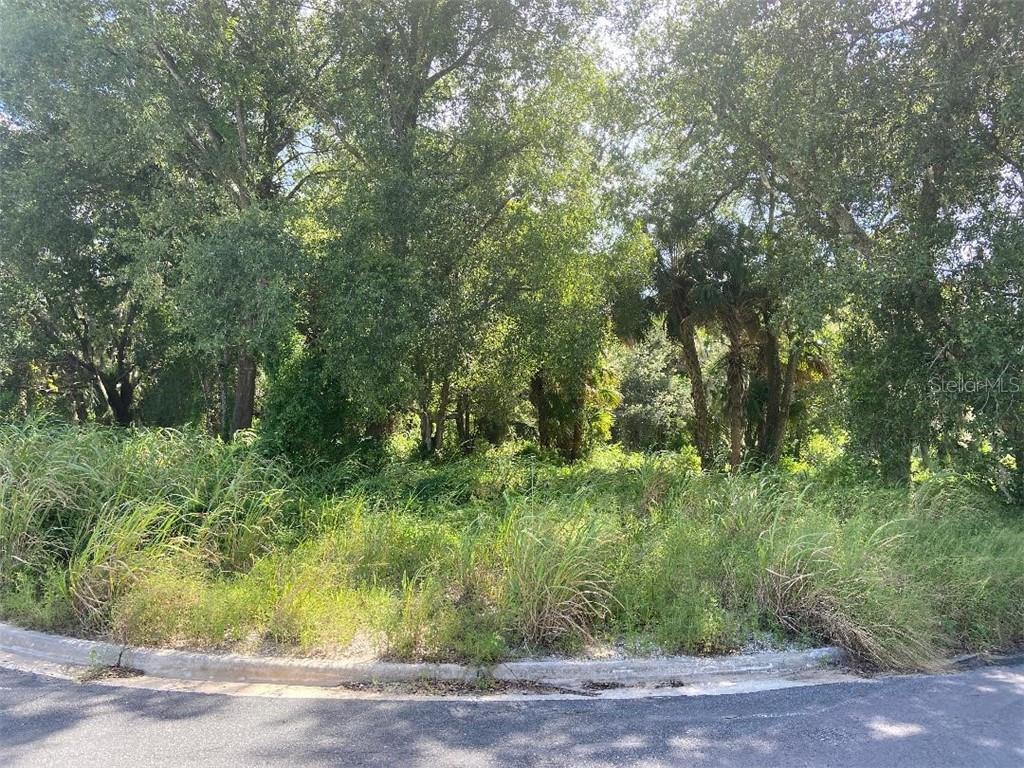 FEARON AVENUE Property Photo - MOUNT DORA, FL real estate listing
