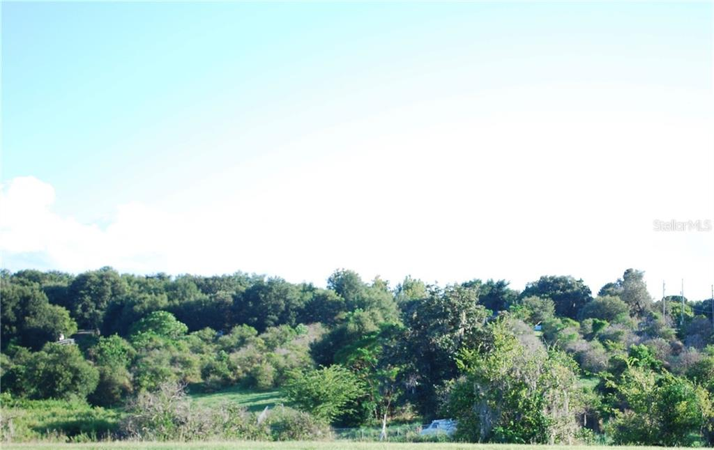 7TH STREET Property Photo - MONTVERDE, FL real estate listing