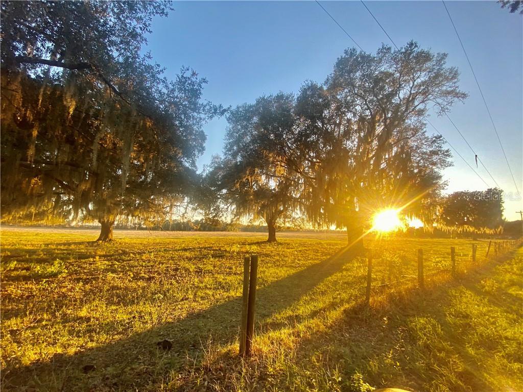 ODOM LANE Property Photo - GROVELAND, FL real estate listing