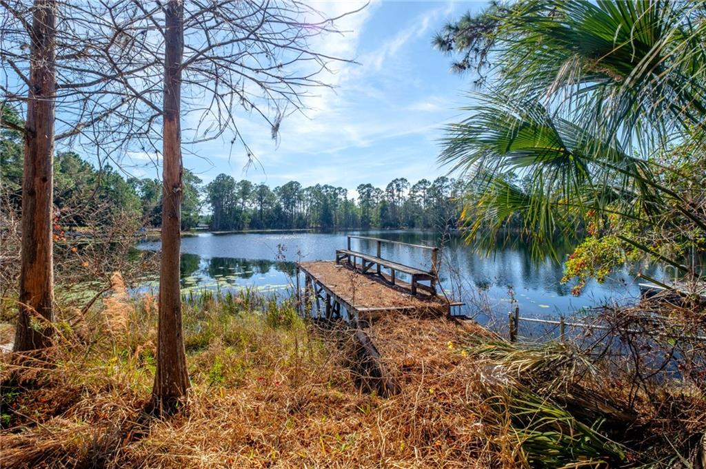42331 MAGGIE JONES ROAD Property Photo - PAISLEY, FL real estate listing