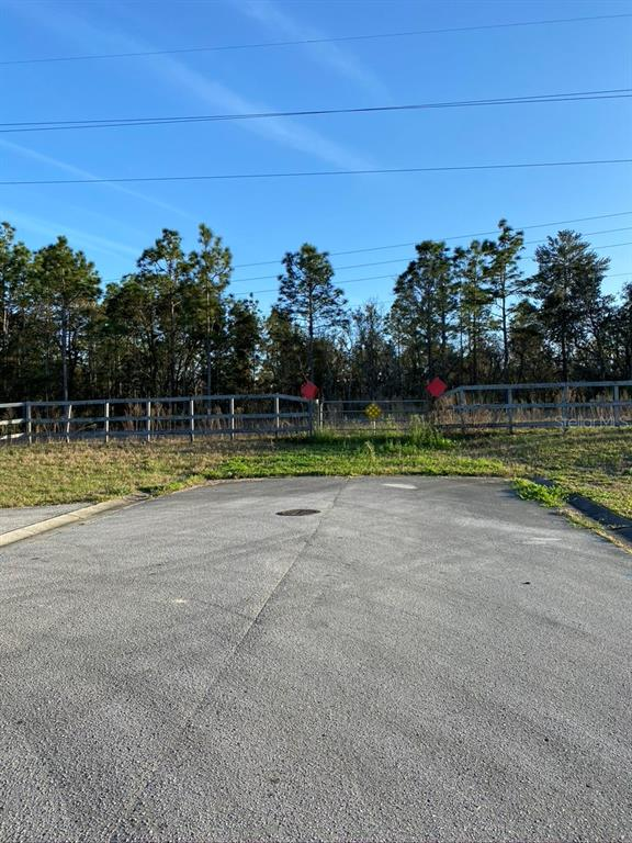 5280 W CINNAMON RIDGE DRIVE Property Photo - LECANTO, FL real estate listing