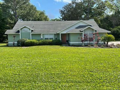 1265 GRAY COURT Property Photo - EUSTIS, FL real estate listing