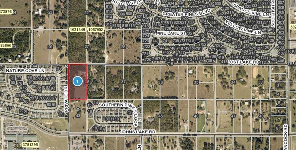 14240 LOST LAKE ROAD Property Photo - CLERMONT, FL real estate listing