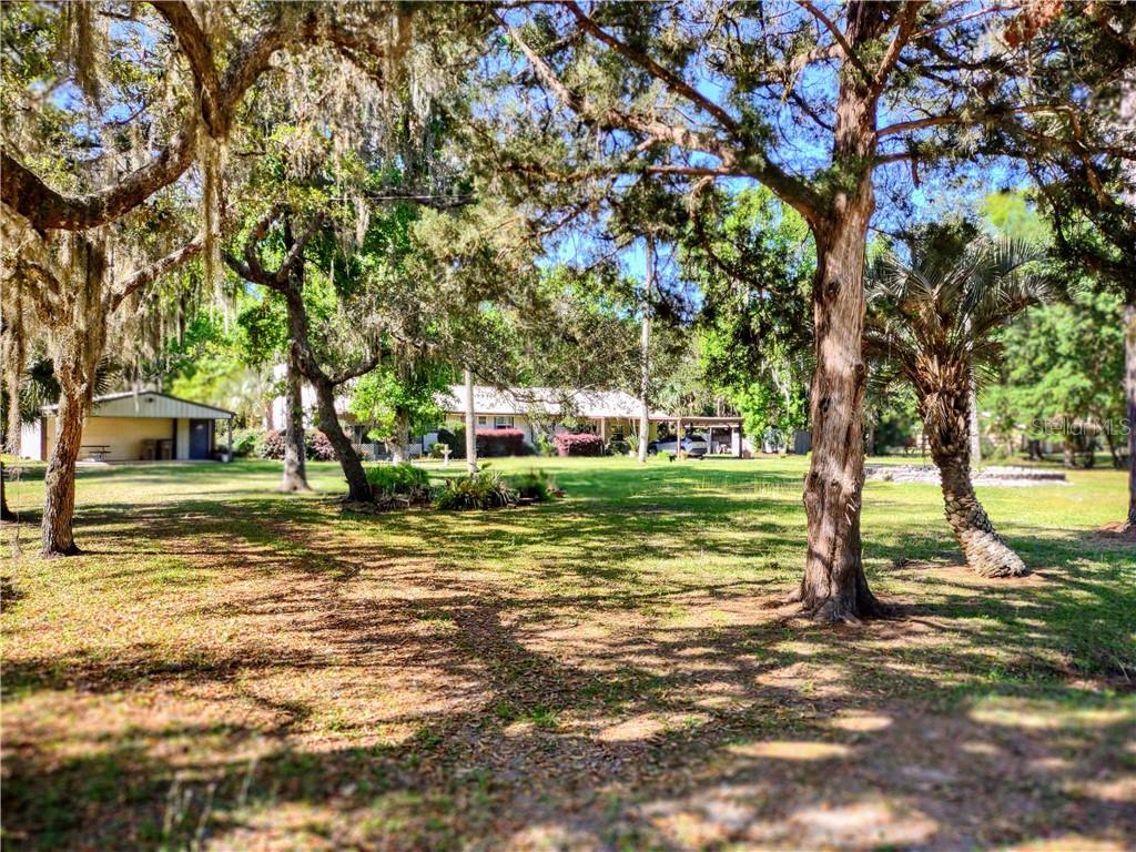 22308 BLUE CREEK LODGE ROAD Property Photo - ASTOR, FL real estate listing