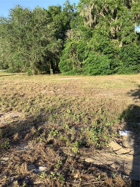 13434 MARYLAND AVENUE Property Photo - ASTATULA, FL real estate listing