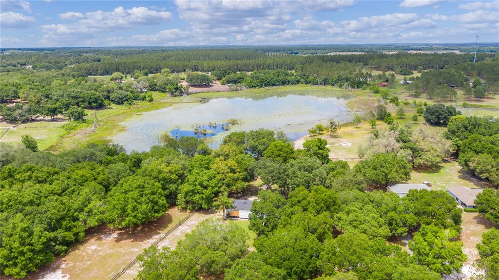 17095 SE 173RD TERRACE ROAD Property Photo - WEIRSDALE, FL real estate listing