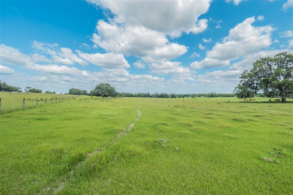 8427 S Pleasant Grove Road Property Photo