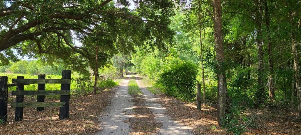 7944 Bay Lake Road Property Photo 1