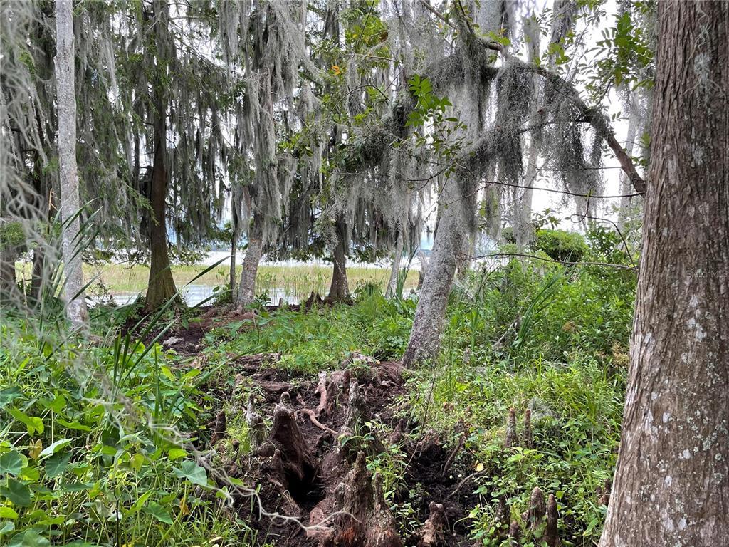 Florida Avenue Property Photo 1