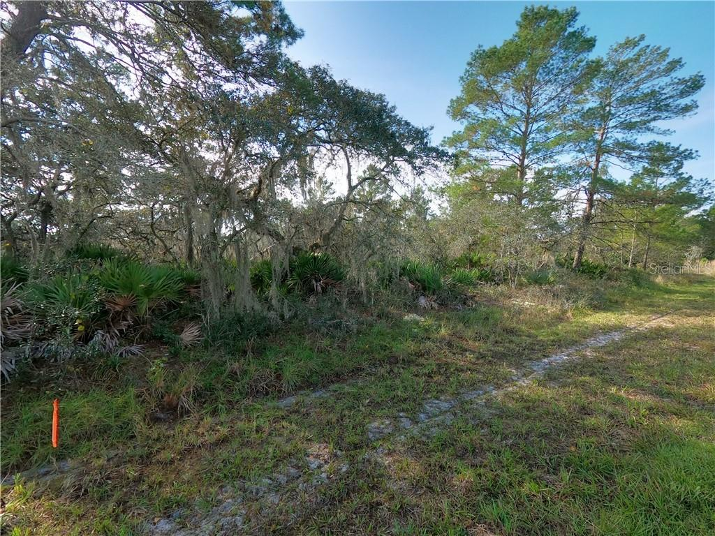 Oakridge Drive Property Photo