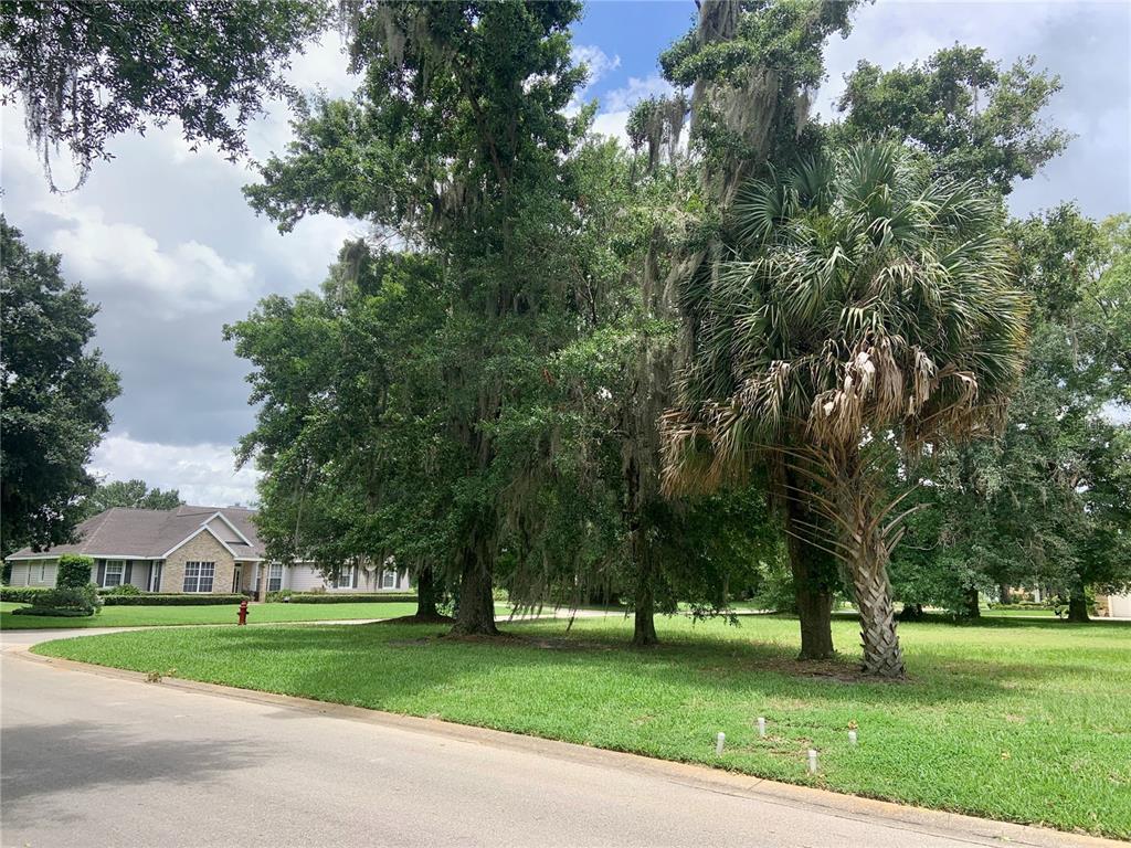 1034 Briarwood Drive Property Photo