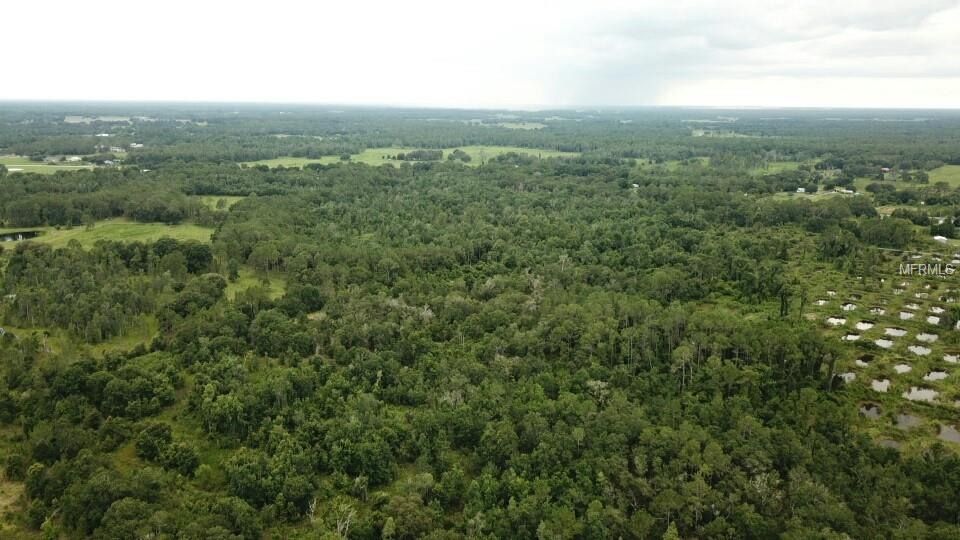 10950 US HIGHWAY 98 N Property Photo - LAKELAND, FL real estate listing