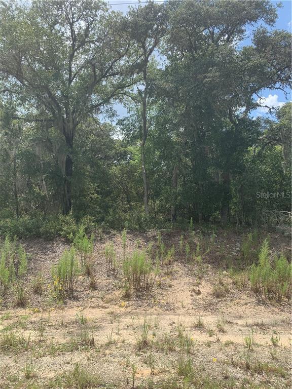 531 GROVE DR. Property Photo - BARTOW, FL real estate listing