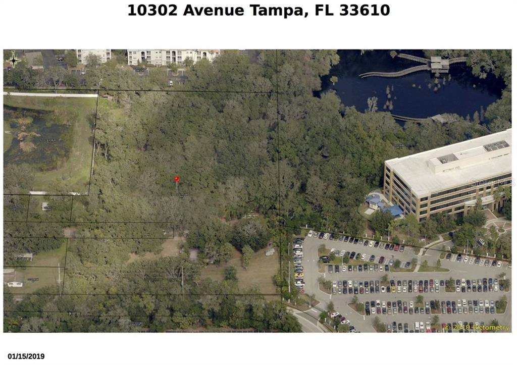 10302 ELLEN AVENUE Property Photo - TAMPA, FL real estate listing