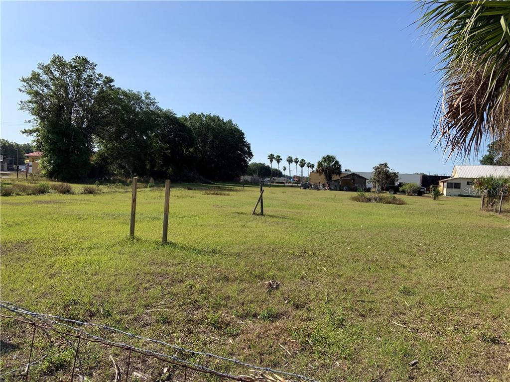 CARLTON ST Property Photo - WAUCHULA, FL real estate listing