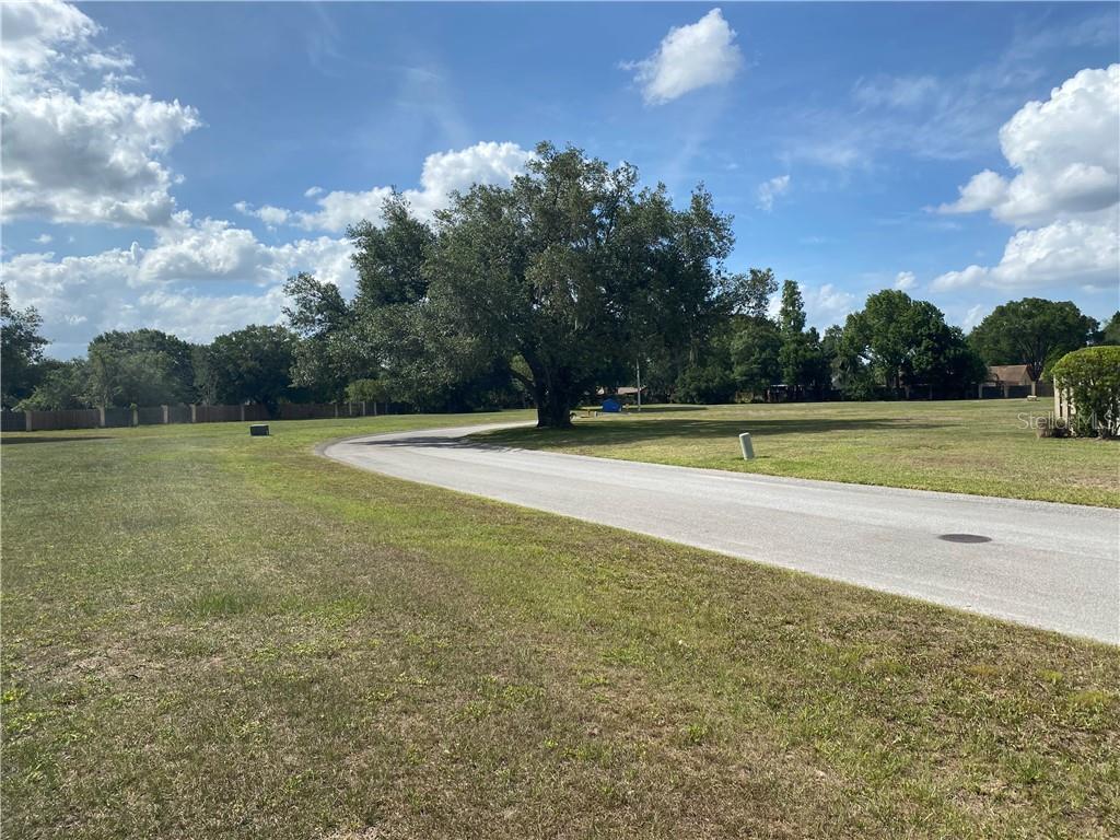 OAK LOOP Property Photo - MULBERRY, FL real estate listing
