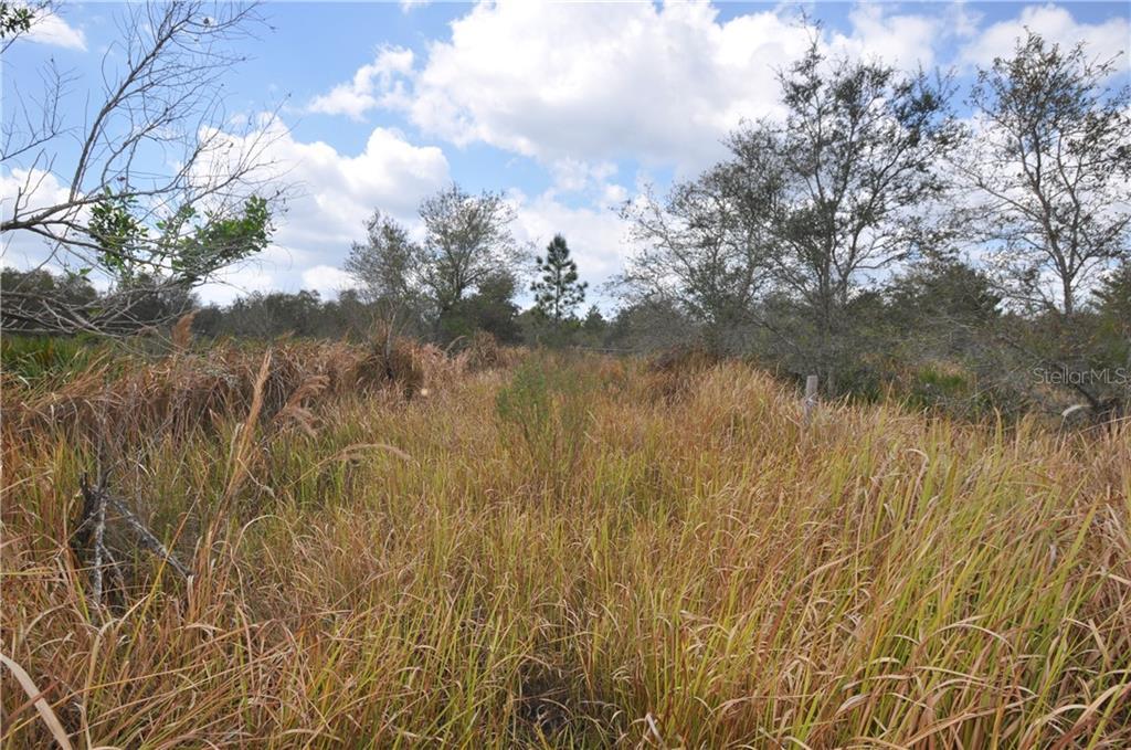 4994 Lake Buffum Rd Property Photo