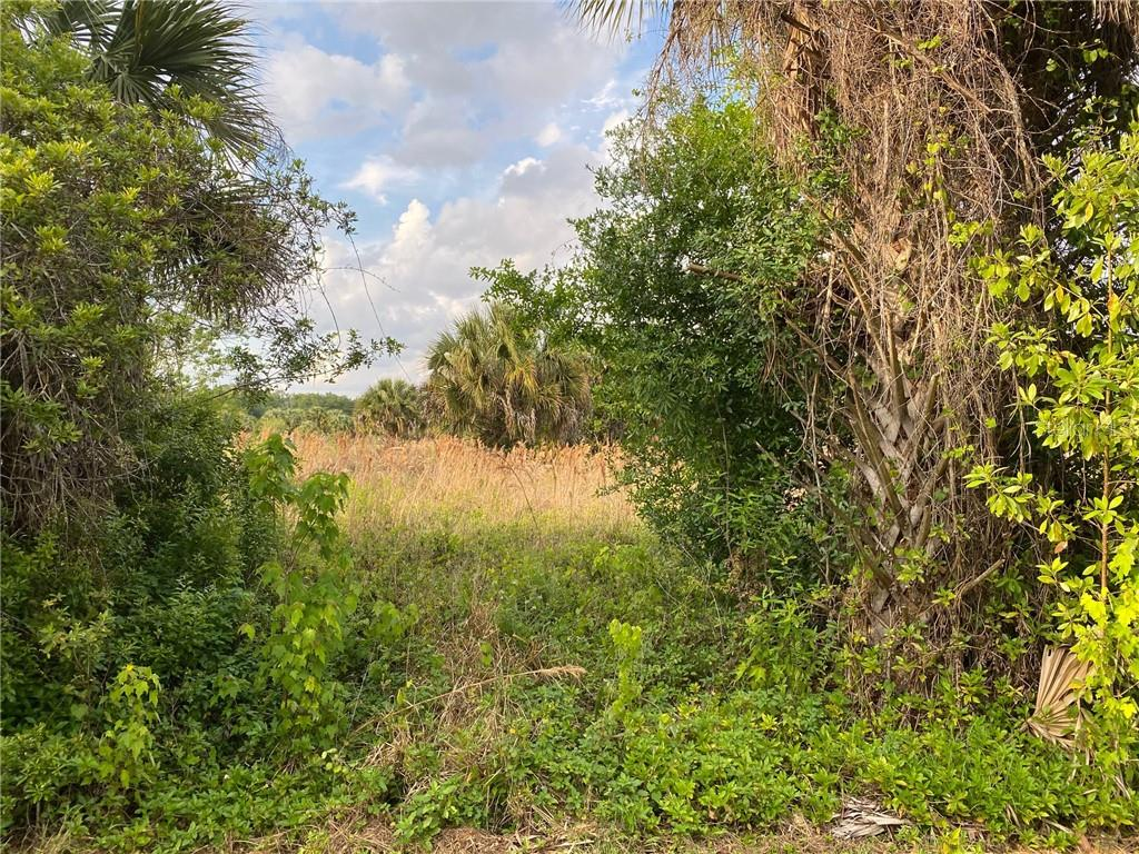 OSCEOLA AVE Property Photo - INTERCESSION CITY, FL real estate listing