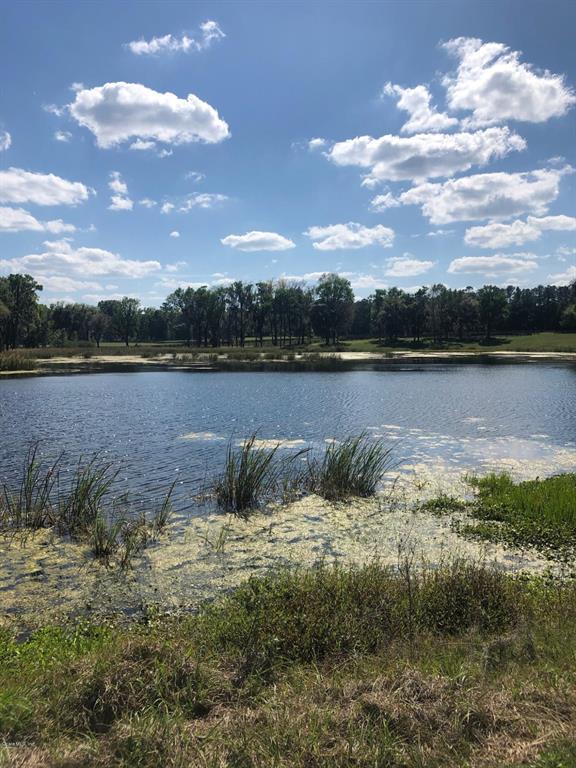 14920 W Highway 318 Property Photo - WILLISTON, FL real estate listing