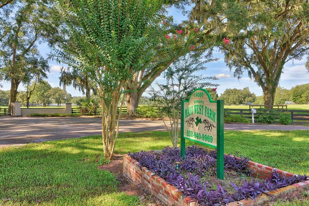 14050 W Highway 326 Property Photo - MORRISTON, FL real estate listing