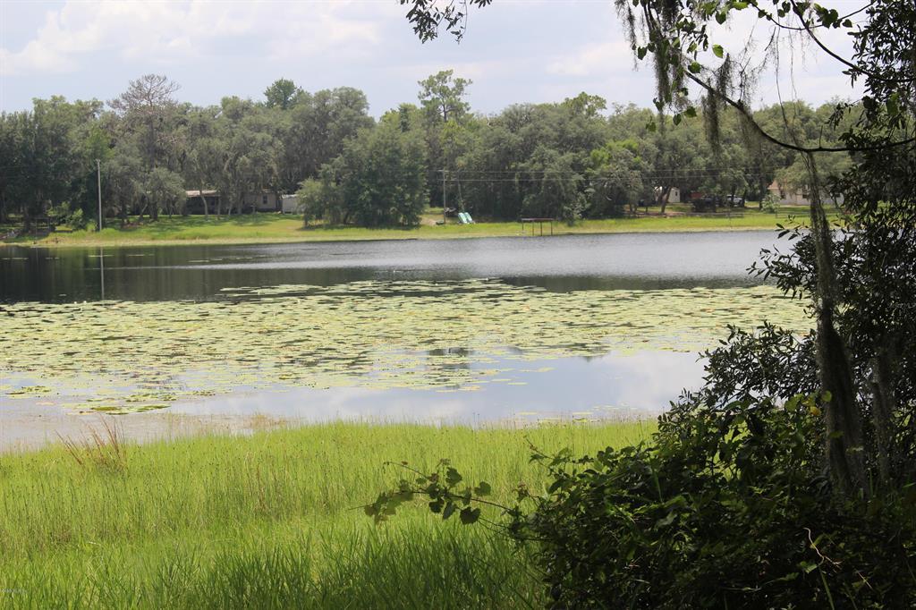 10231 NE 211th PL Property Photo - FORT MCCOY, FL real estate listing